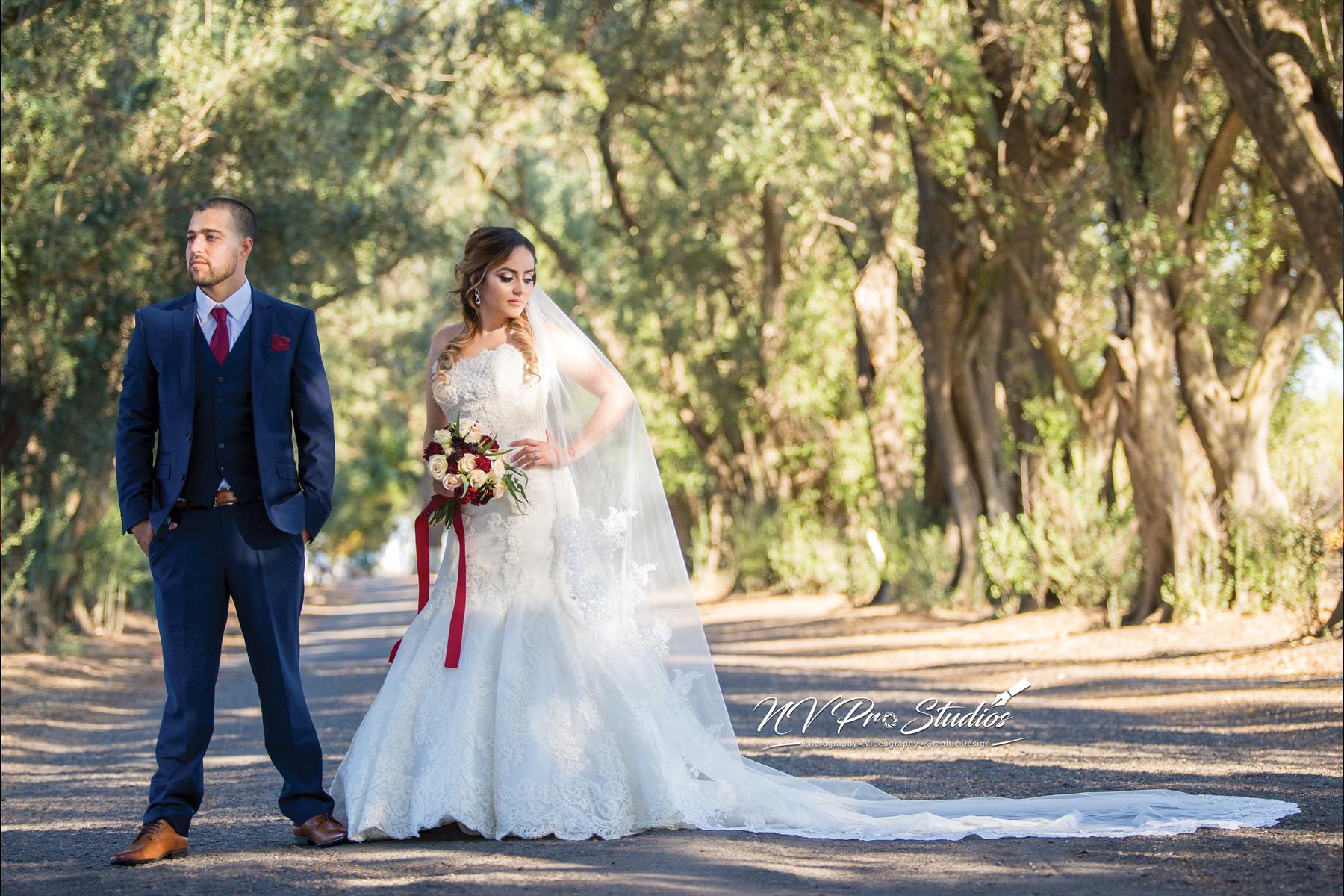 Carson City Photography | Wedding Photographer