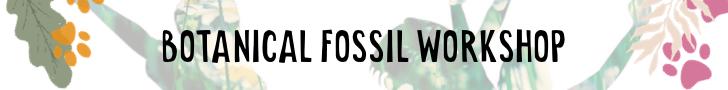Botanical Fossils