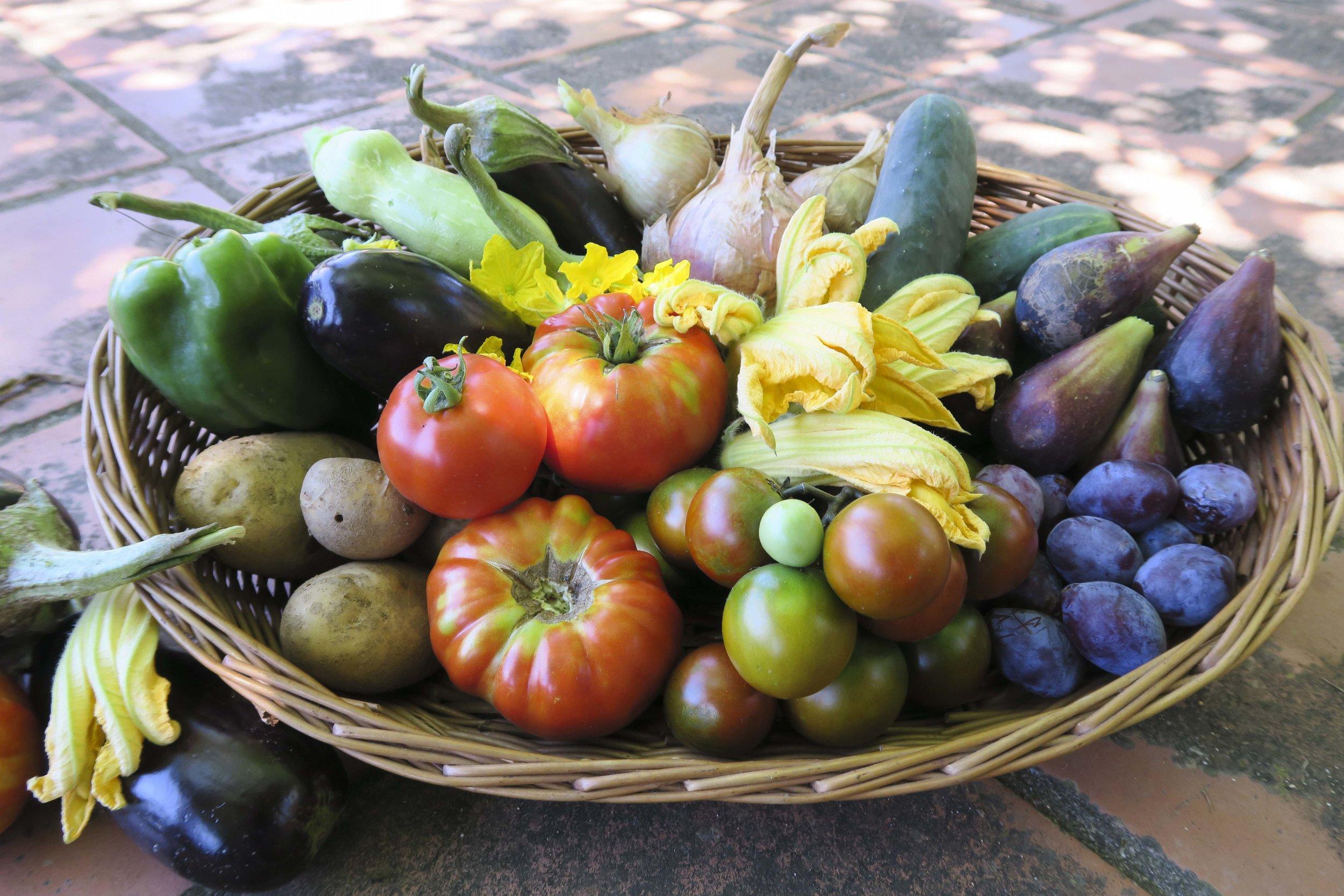 Organic garden veggies