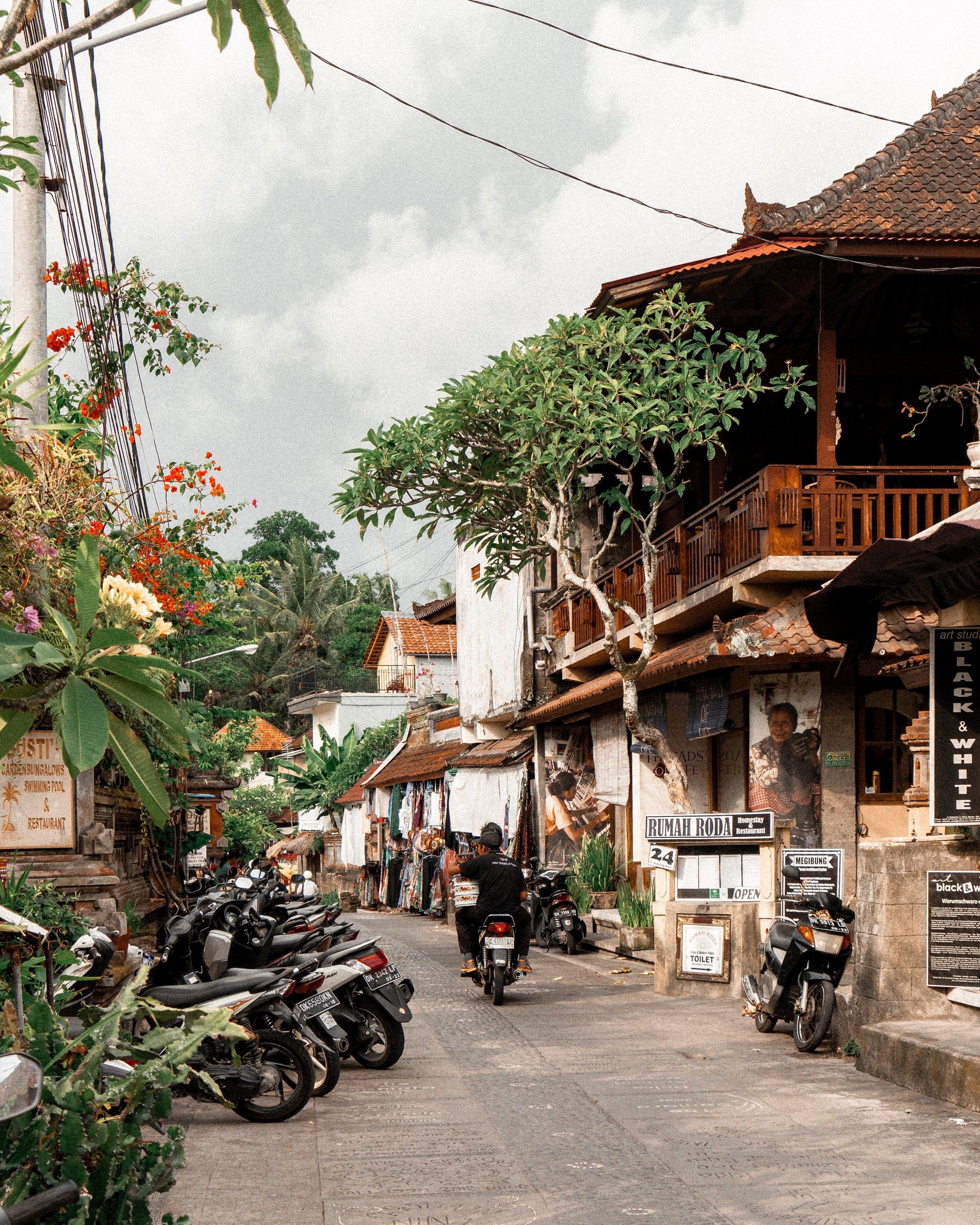 Ubud, Bali, Indonesia - Ellie Dyduch