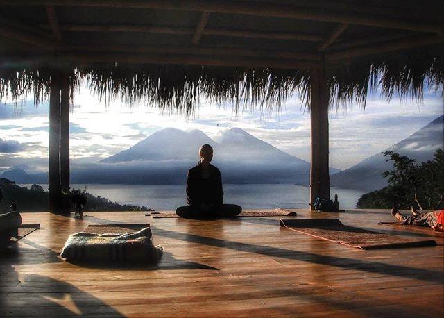 Yogaforest2.jpeg