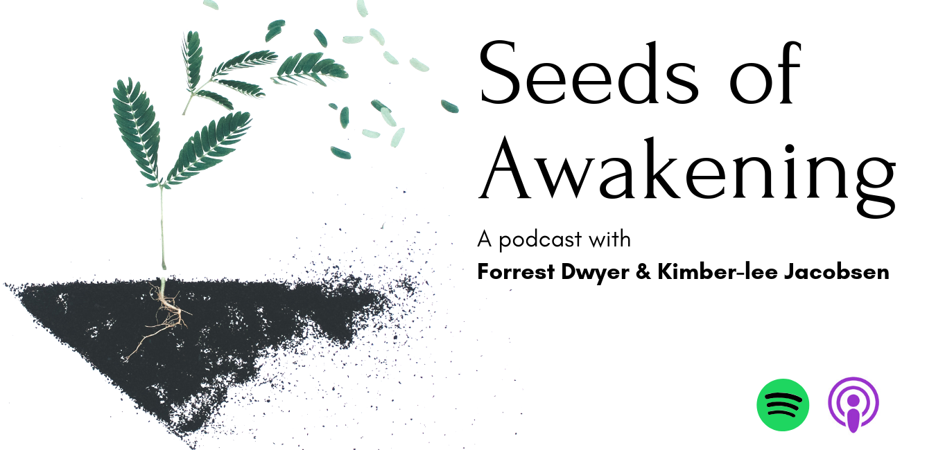 Seeds of Awakening