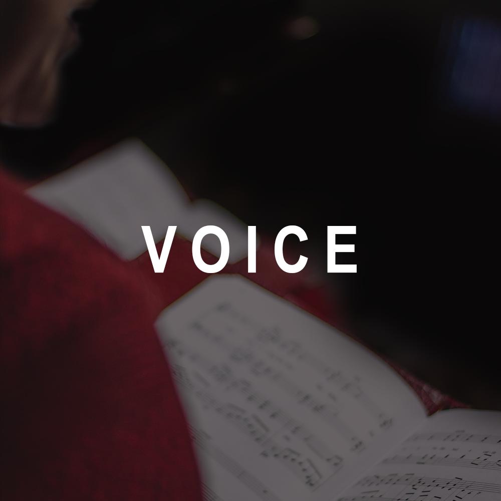 _voice_v2.png