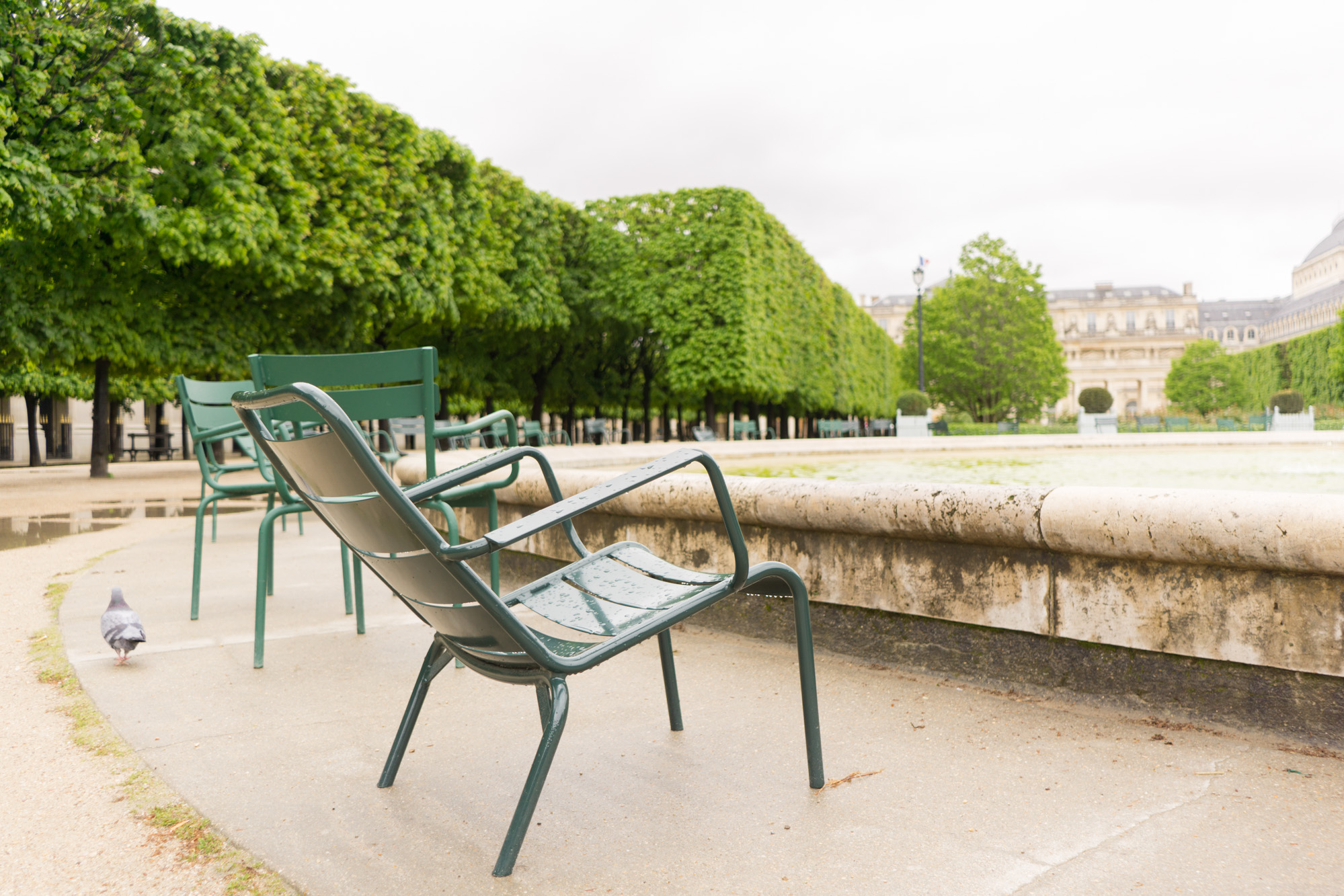 Jardin du Palais Royal Guide | Paris Travel Tips | Experience the magical Palais - Royal and gardens with this wanderlust inducing travel guide.