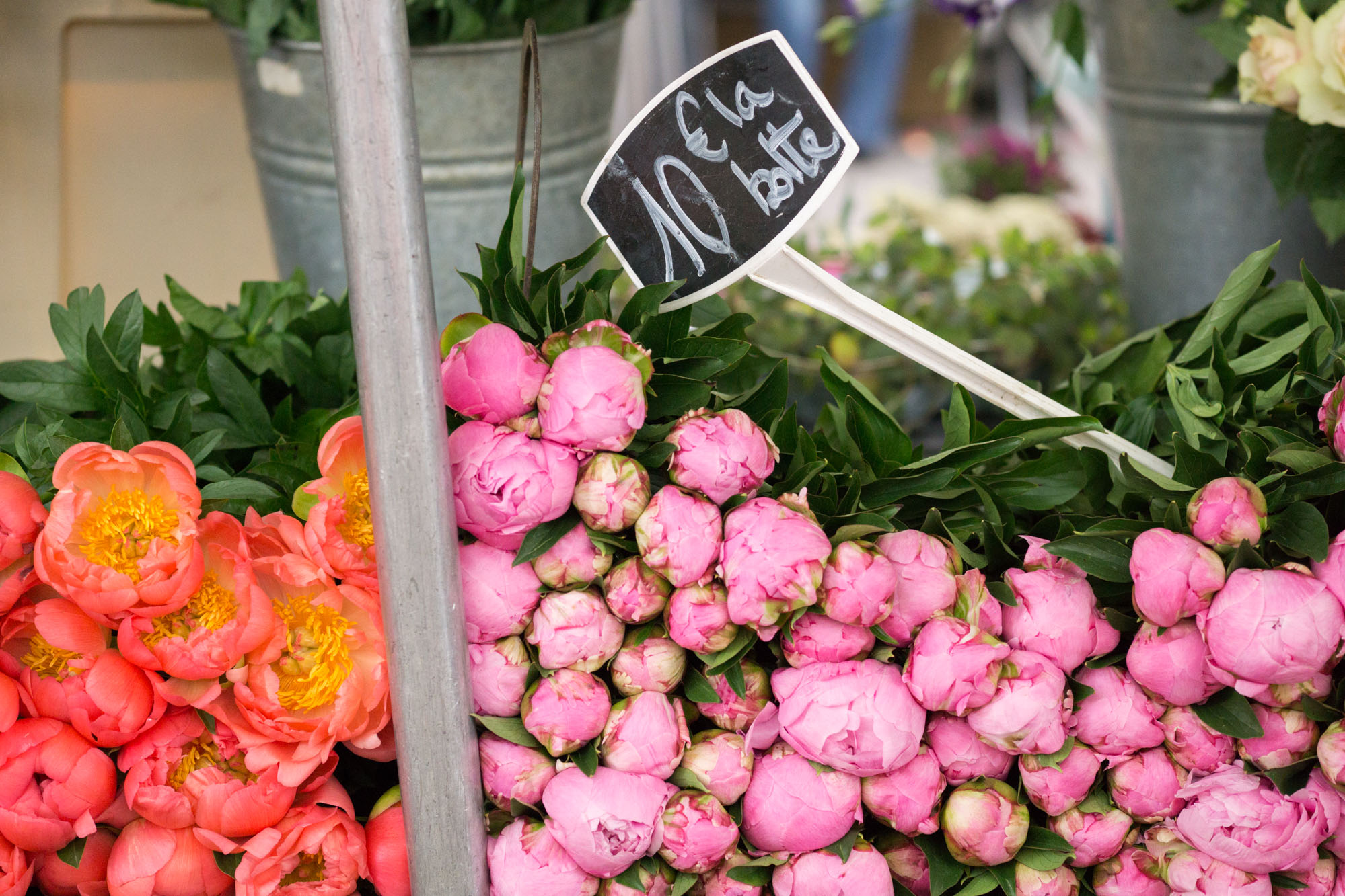Love peony season?! Discover the best markets in Paris for beautiful peonies | Peony season in Paris | Paris Flower Markets