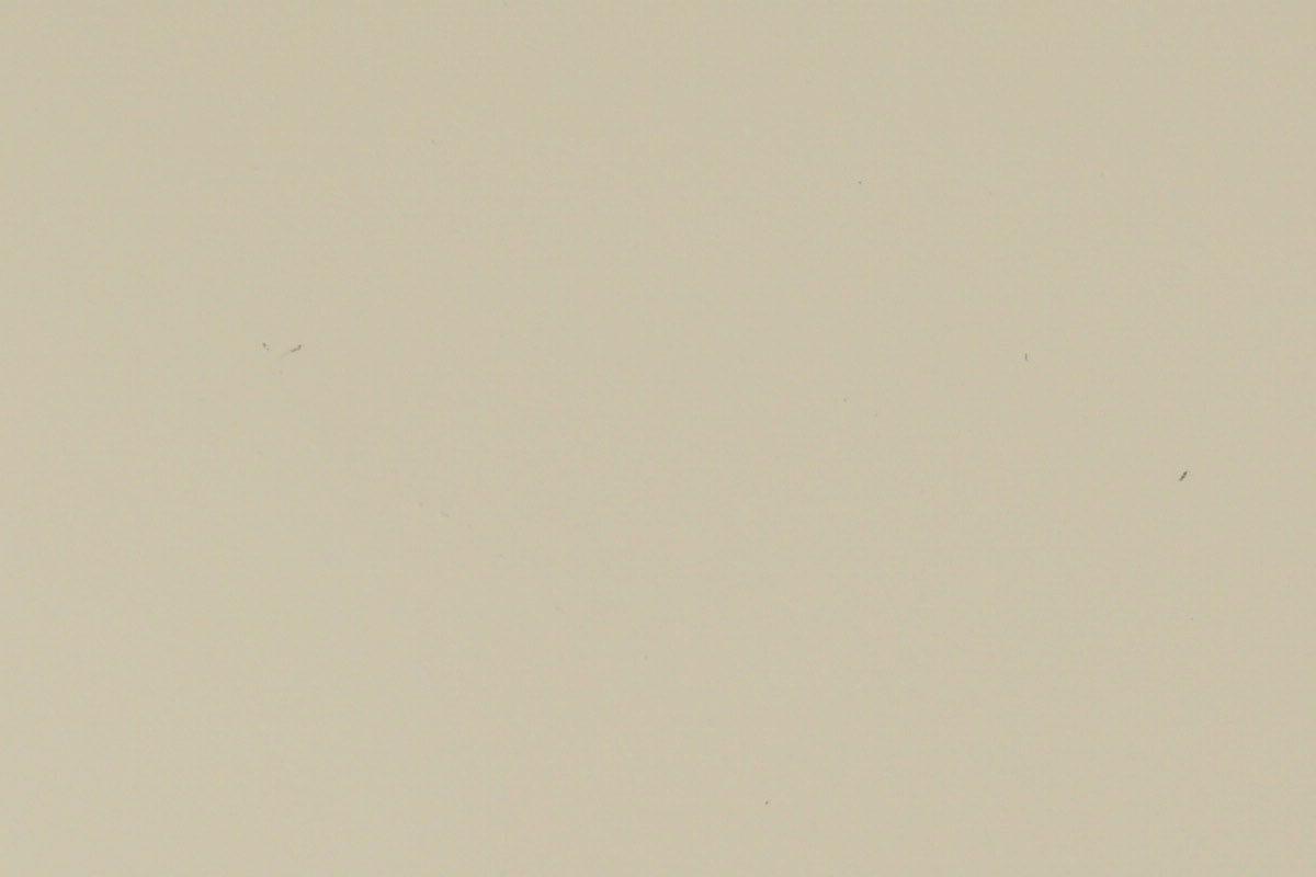 Opaque 1015 Sable