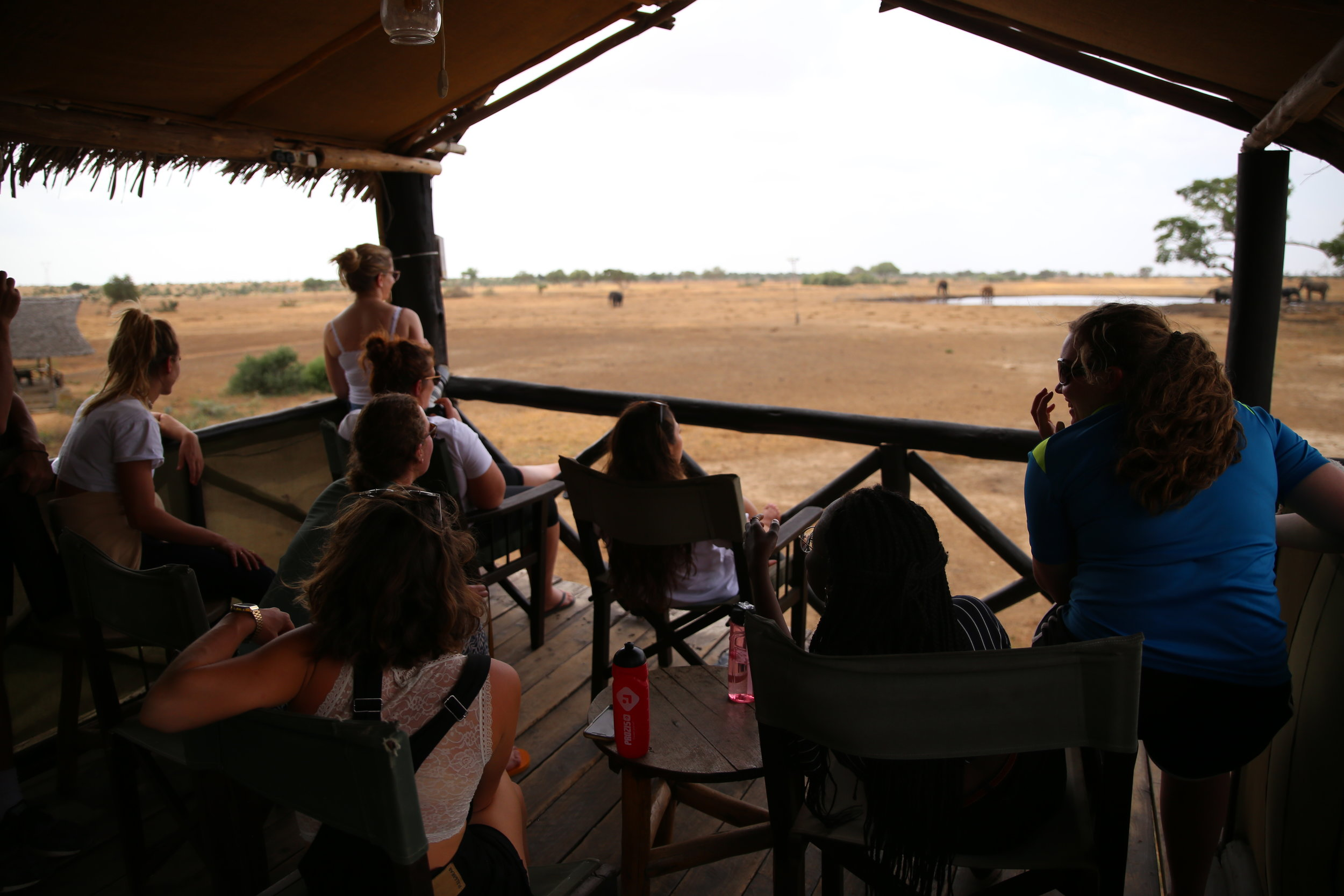 satao camp kenya