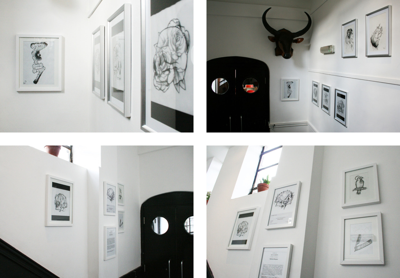 DEATH & REBIRTH: An Exhibition of New Drawings by Mathew Bargery