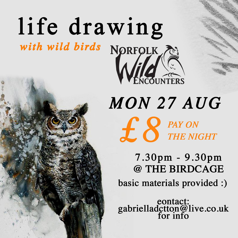 wild birds with info.jpg