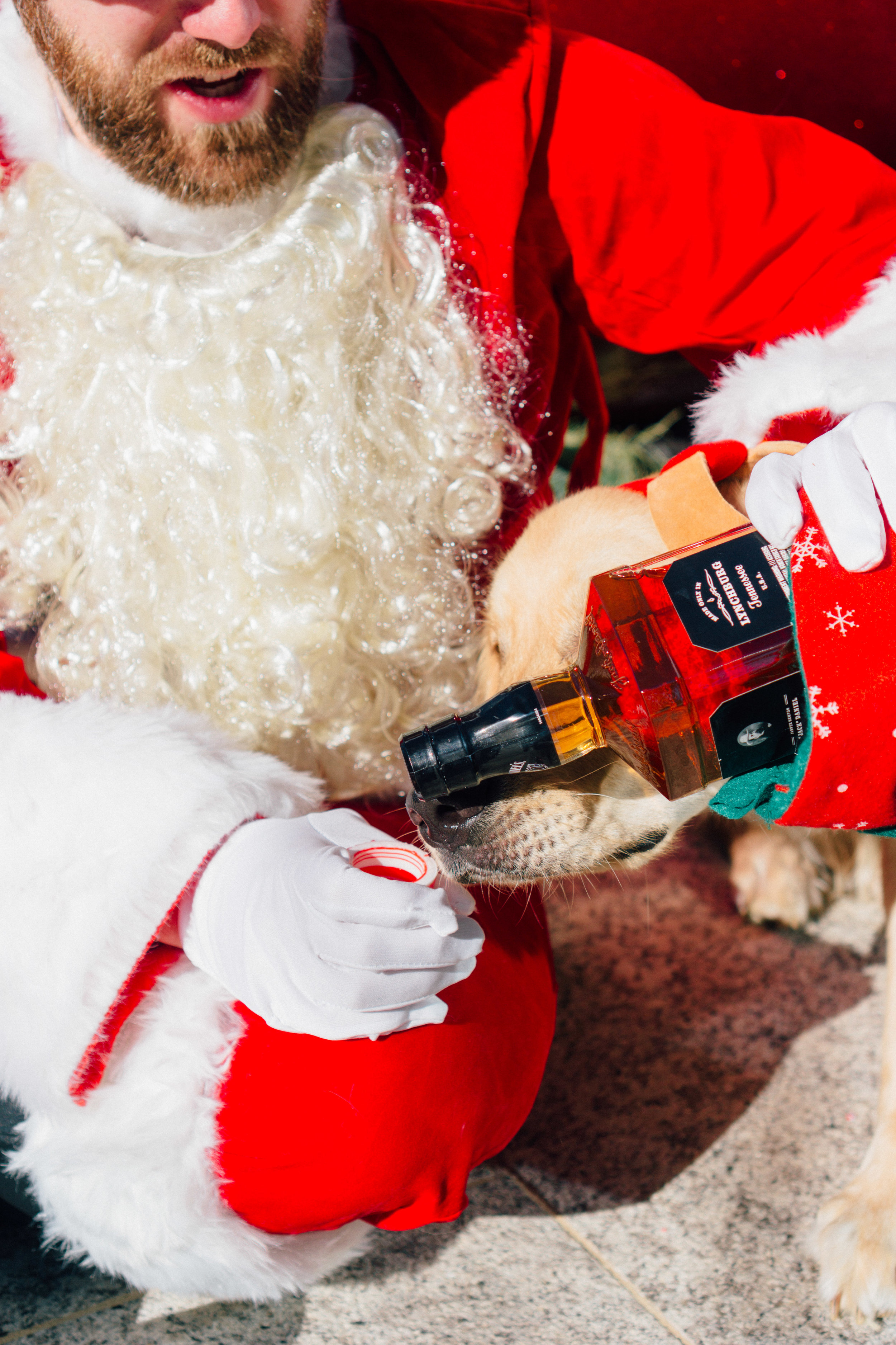 Santa-1392.jpg