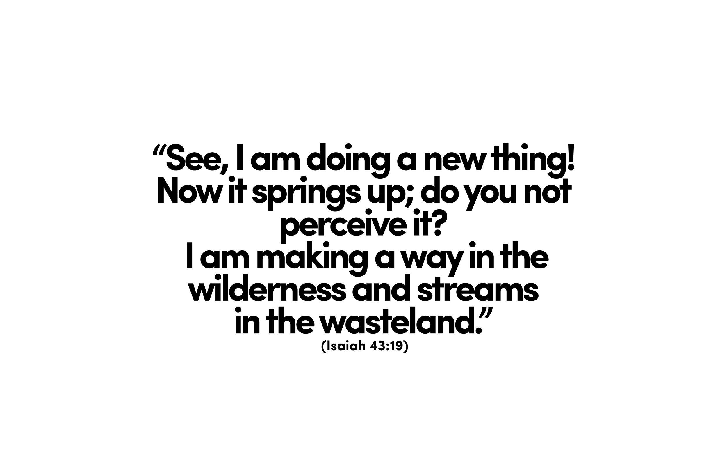 cover scripture.jpg