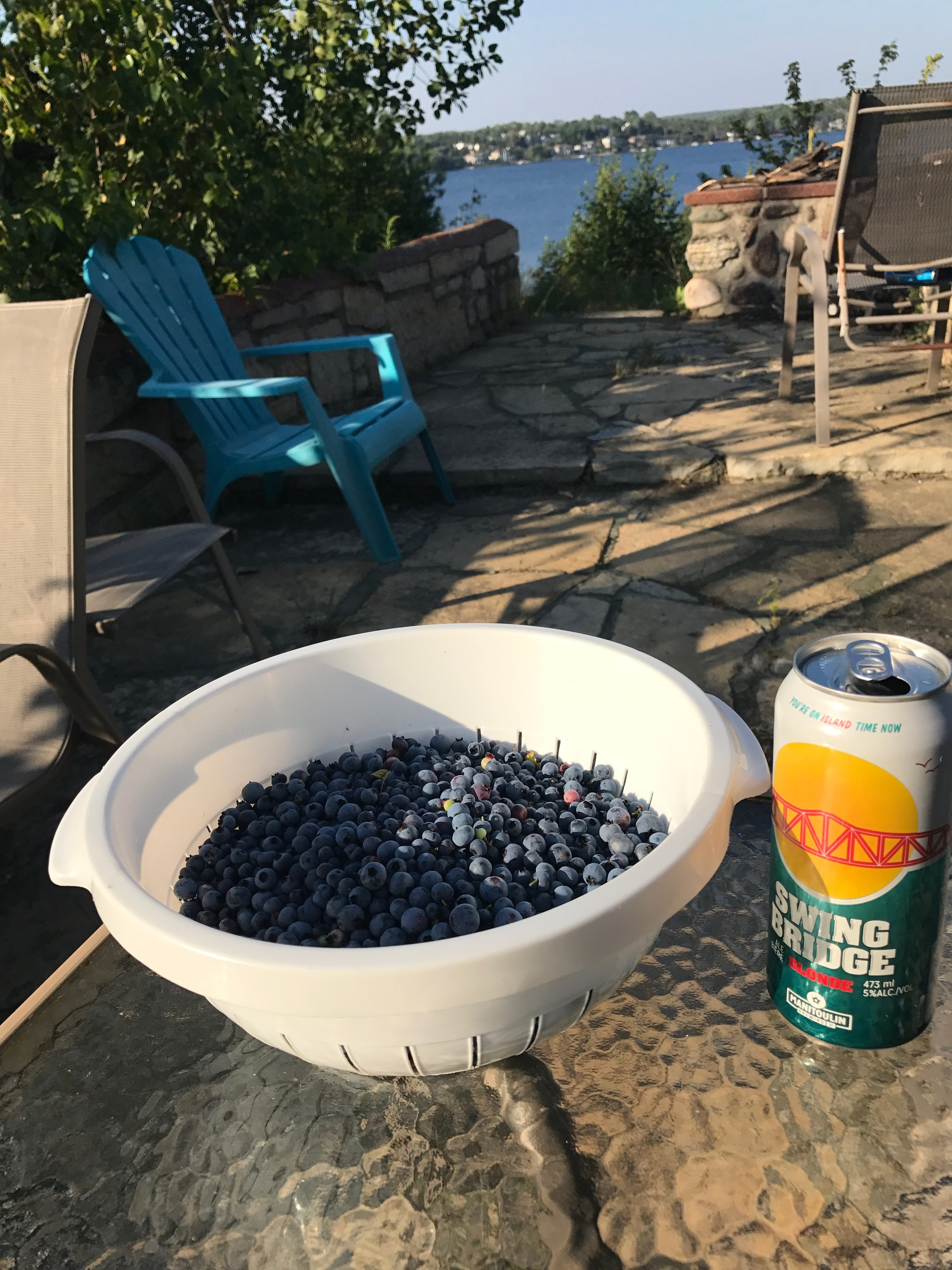 Fresh Blueberries picked on the shores of Lake Ramsey,  Manitoulin Swing Bridge  was the refreshment of choice!