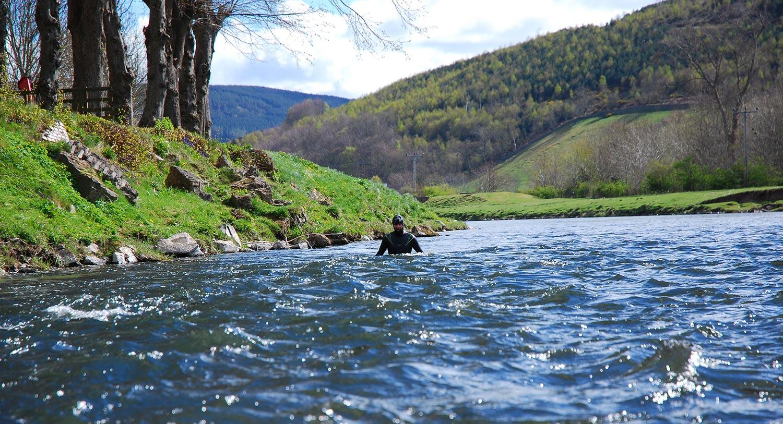 Swimming the Tweed