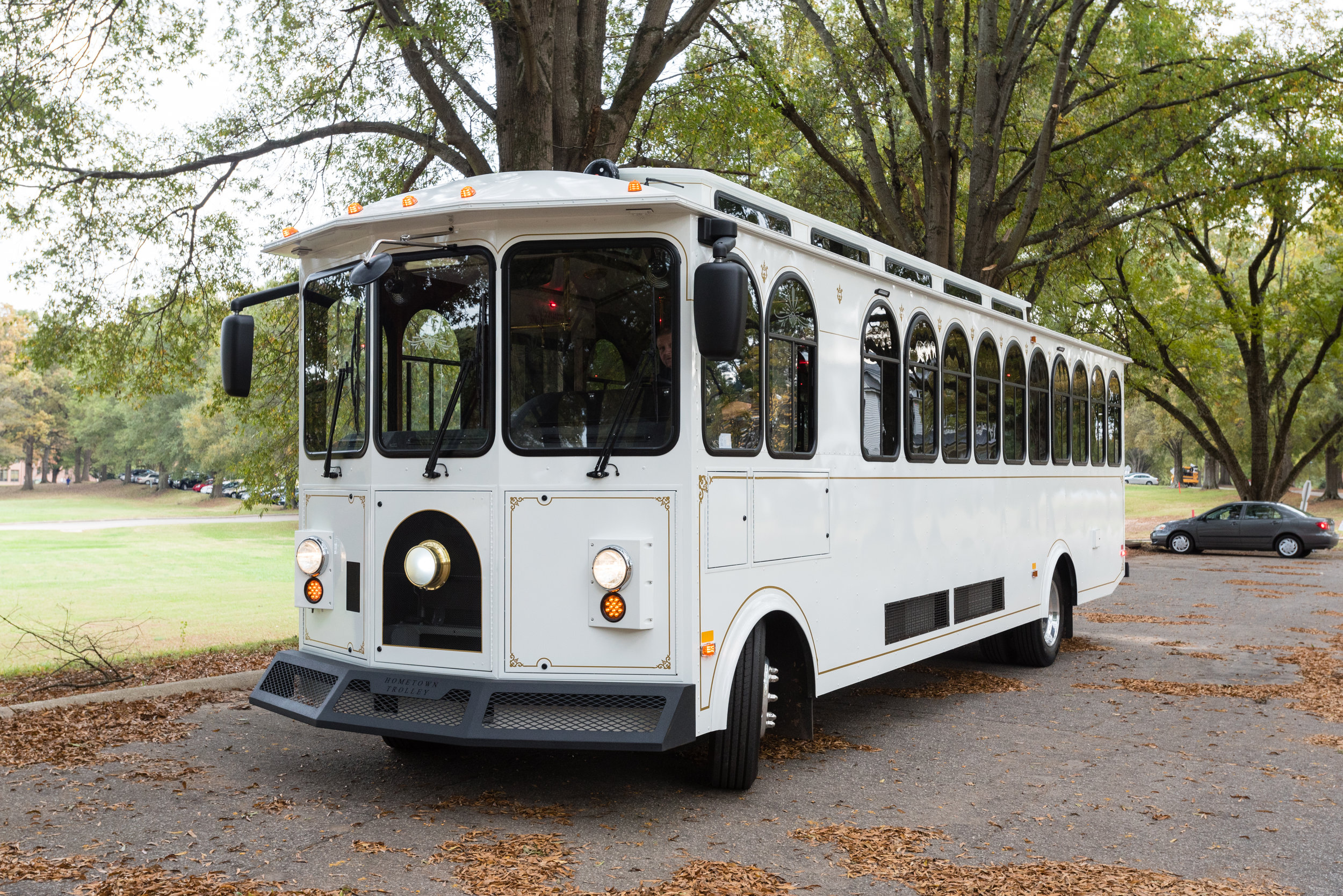 Dolly, The Great Raleigh Trolley
