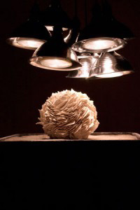 Coreena Affleck, untitled, 2014, bisque fired porcelain, unfired stoneware, wax, glaze, halogen lights, kyanite, saggar