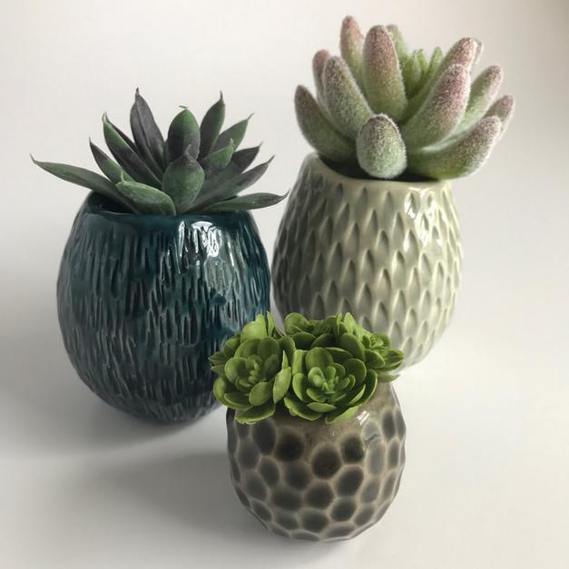 Barnacle Pots