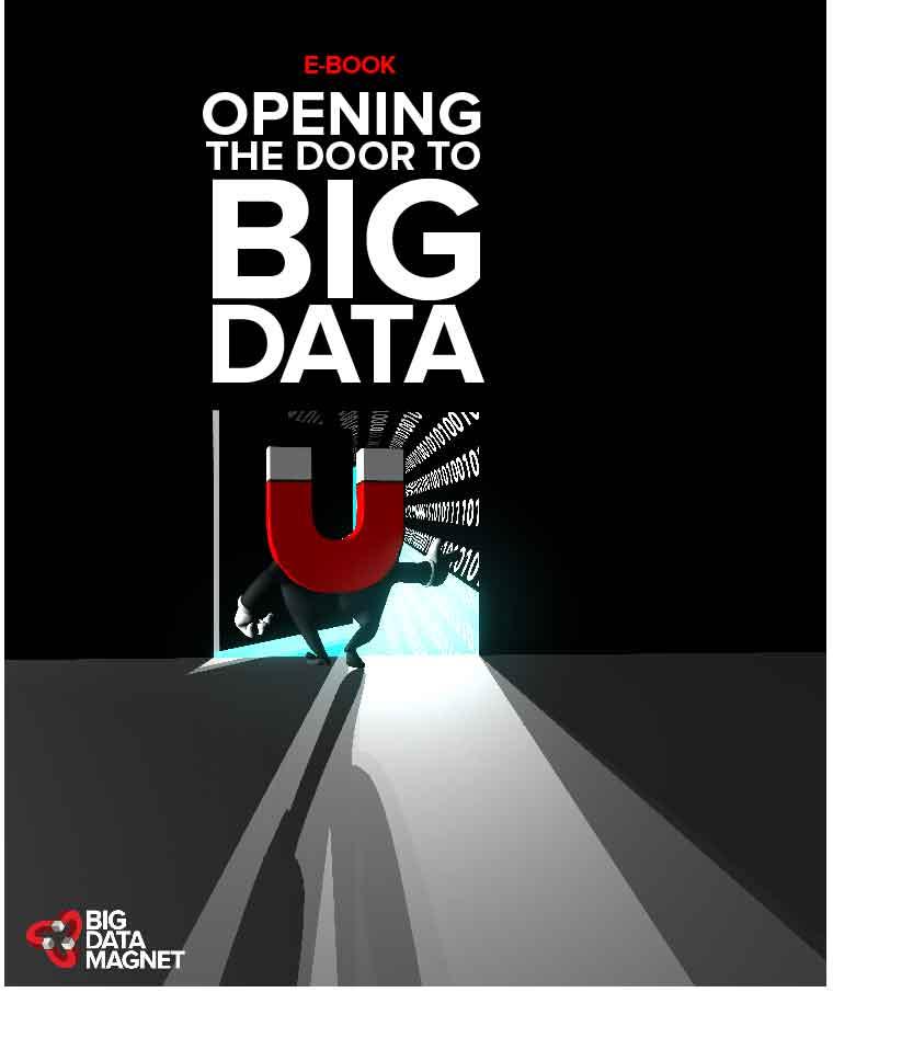 Opening the Door to Big Data E-Book Big Data Magnet.jpg