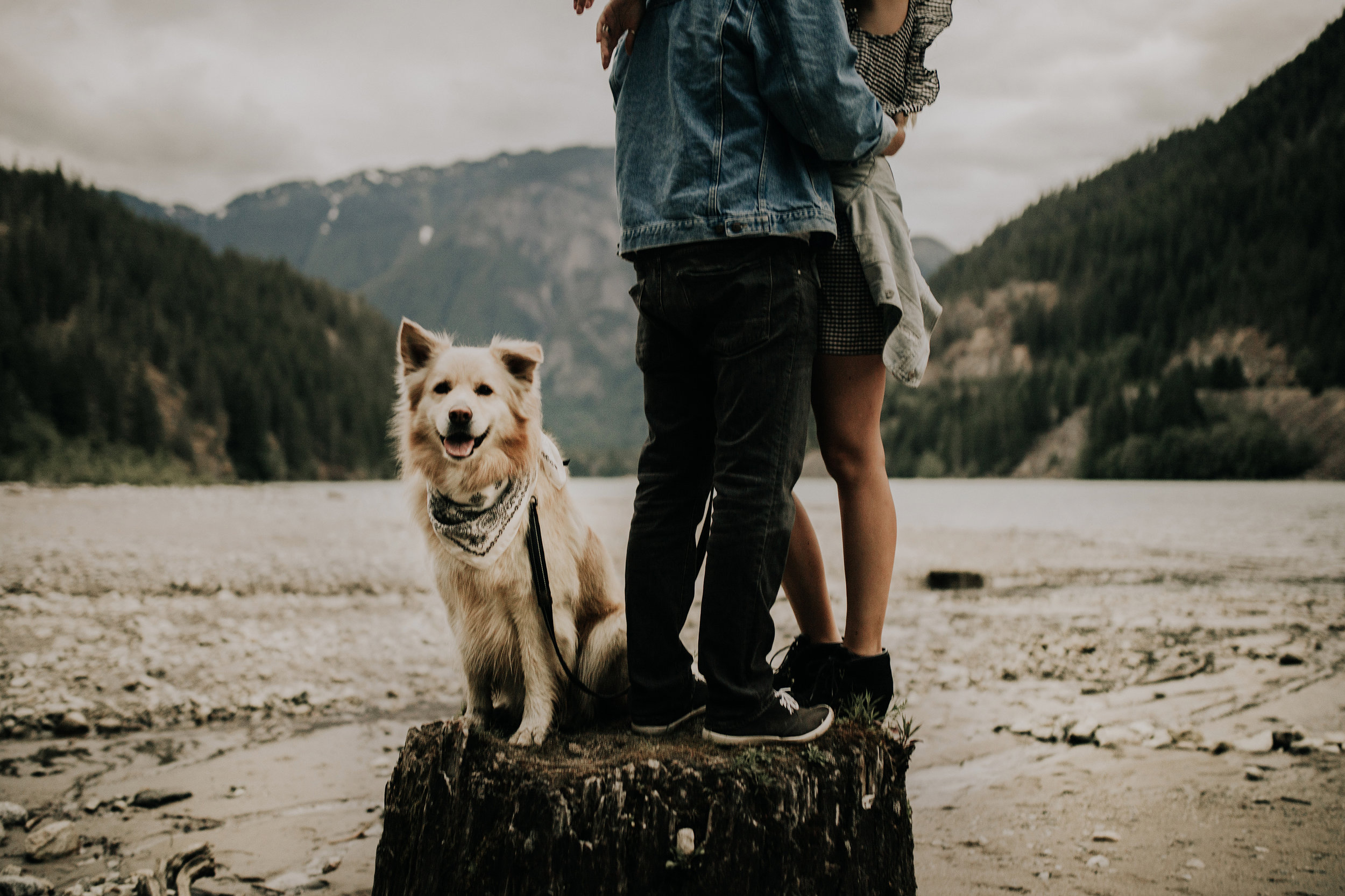 North Cascades National Park Washington elopement8.jpg