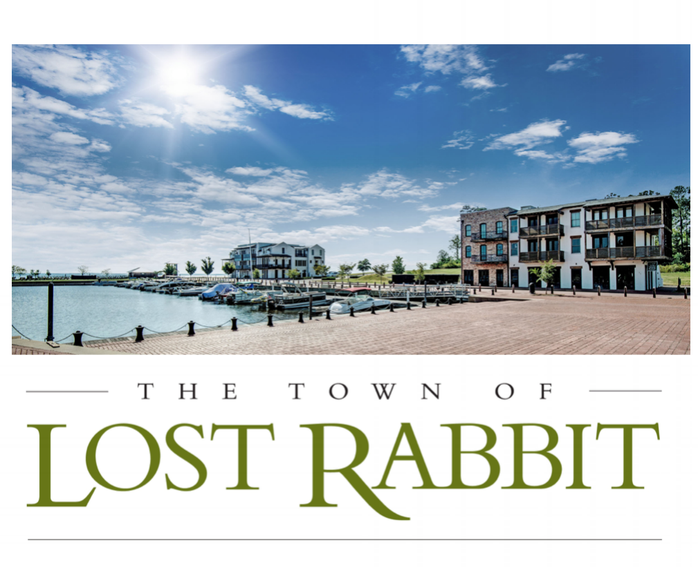 The Town of Lost Rabbit