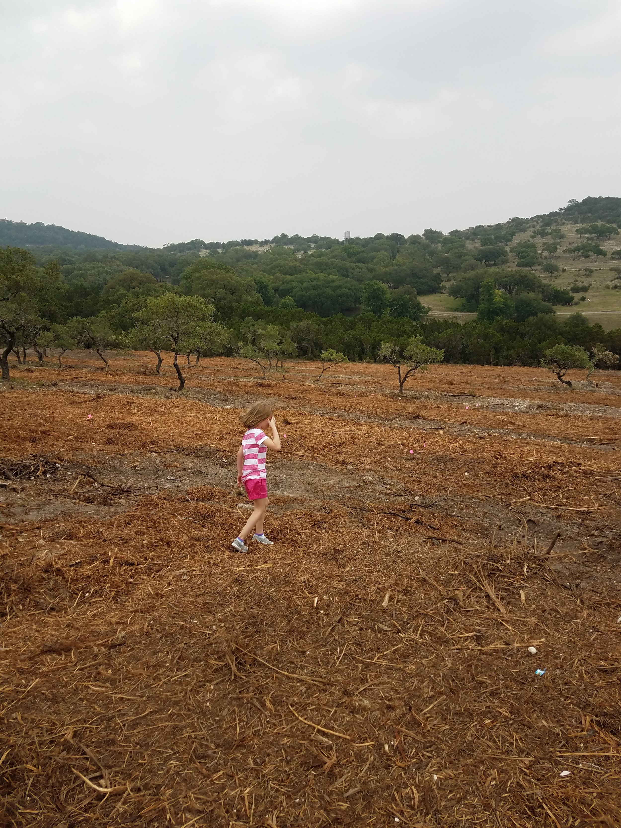 Exploring her new backyard AFTER we fired the first land clearing company and  brought in another  to finish the job. So much better, right?!