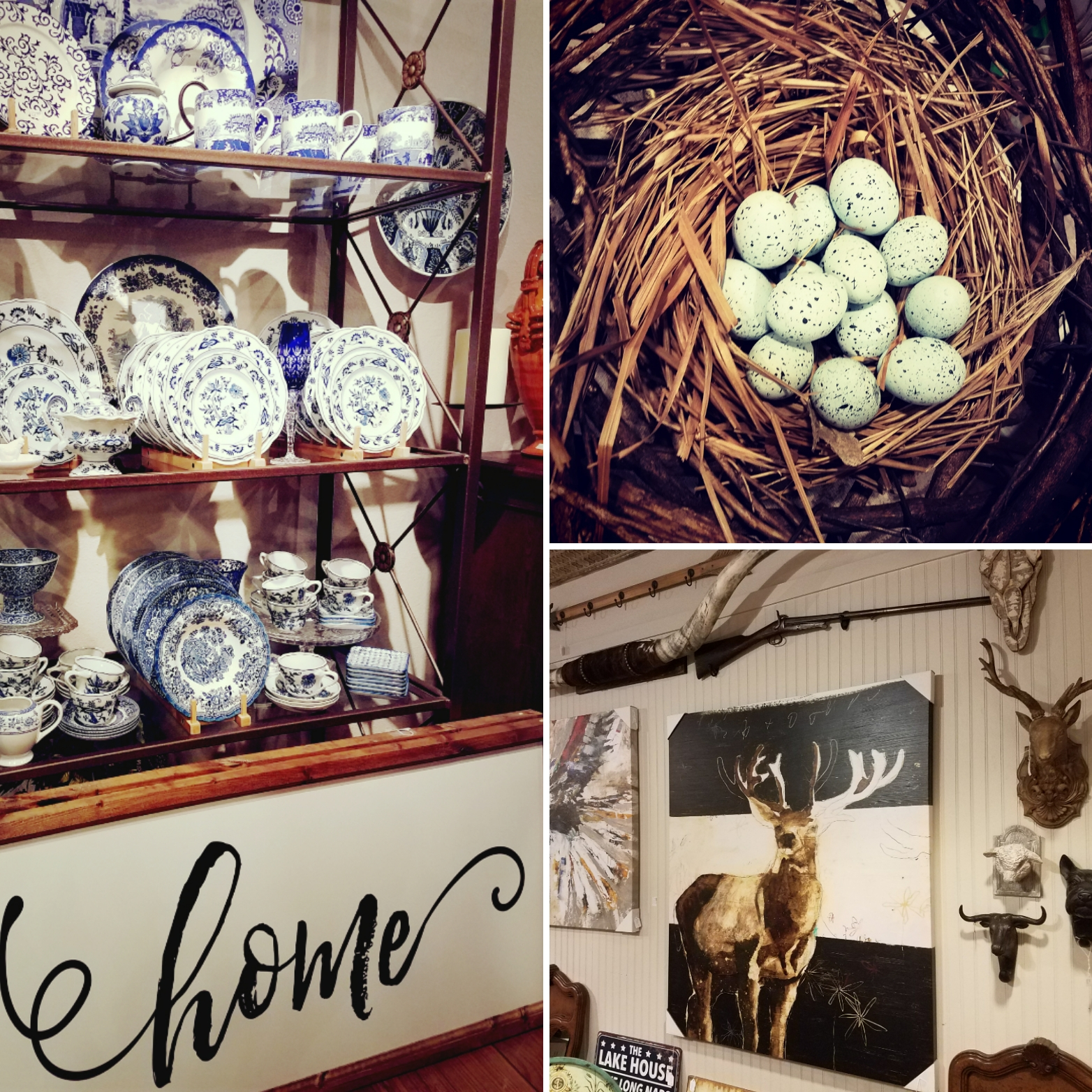 Hunting & Gathering for the Home