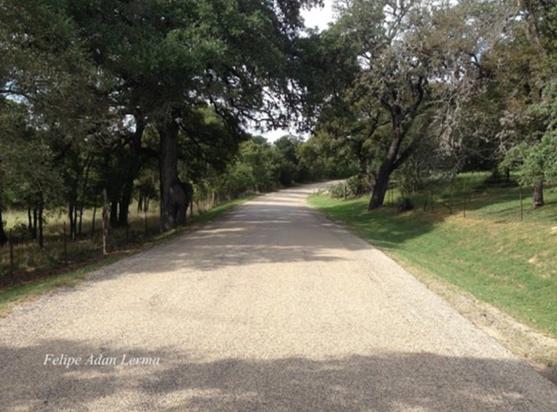 Luckenbach Road, on the way to LBJ State Park (Image via  Trip Advisor )