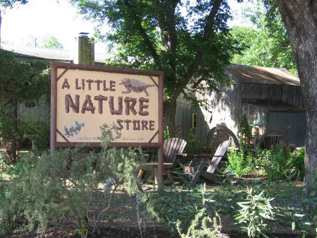 Buy your ticket, then pick up your game board at A Little Nature Store on Main Street ( Image Source )