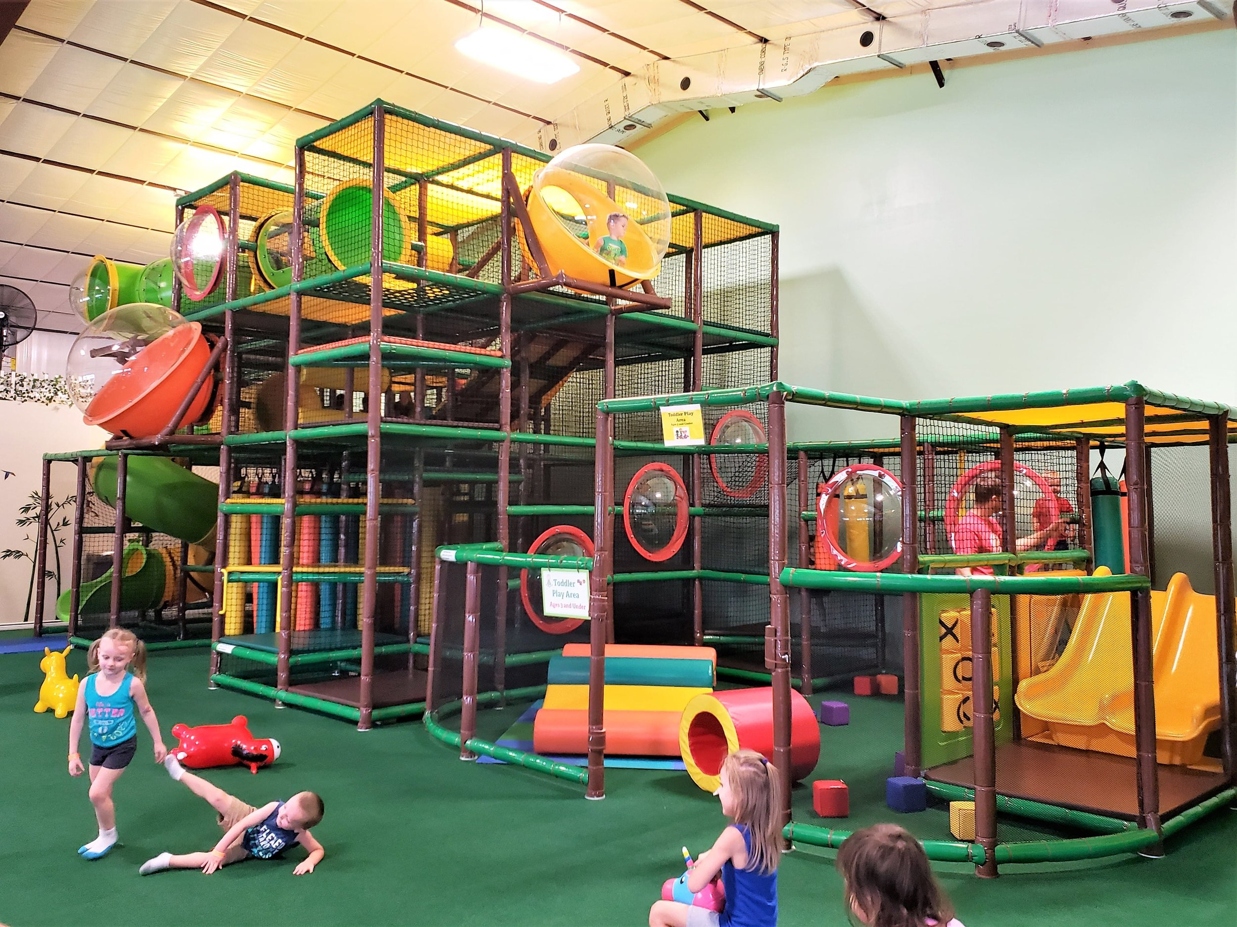 jungle jam party & play birthday party new braunfels boerne texas sowing seeds blog