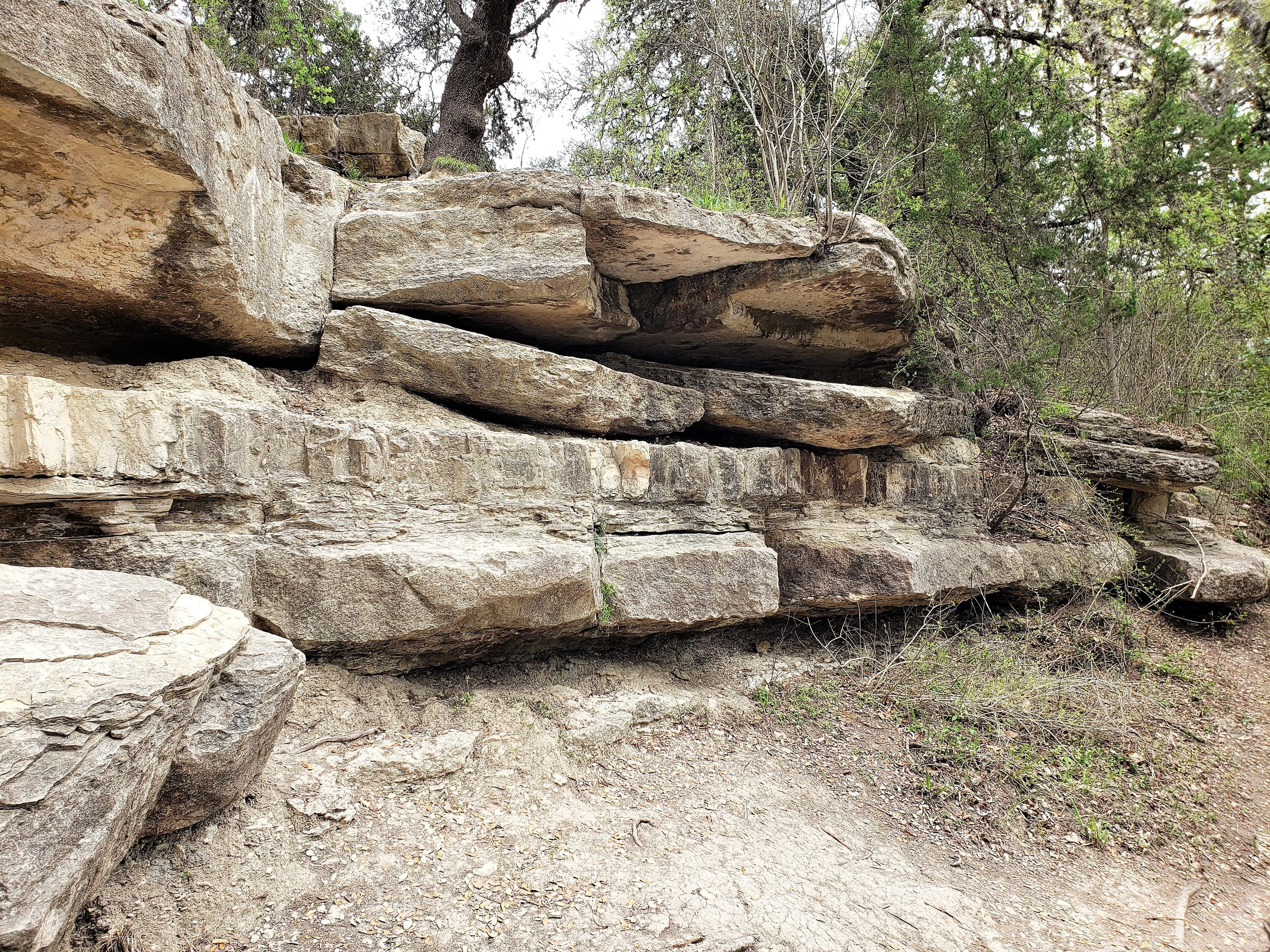 cibolo nature center and farm boerne texas sowing seeds blog
