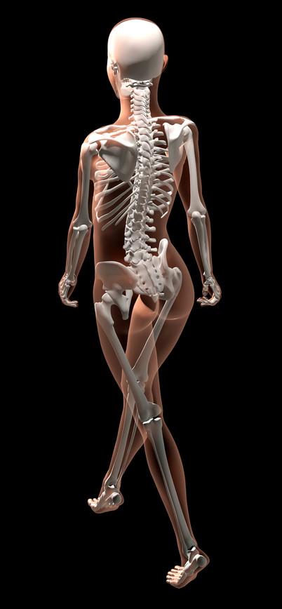 Female skeleton walking_gg58105939.jpg