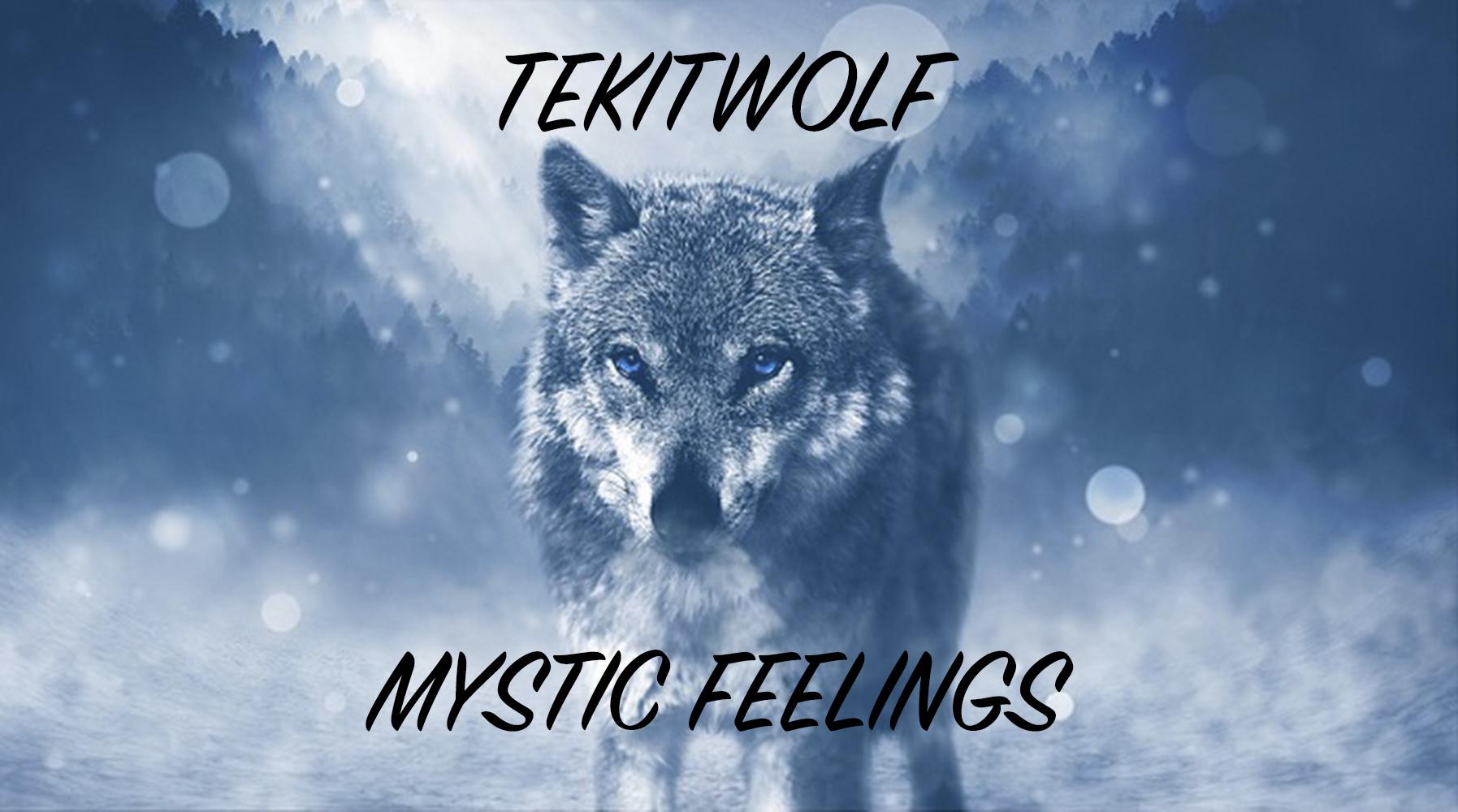 Wolf-Spirit-Animal-Totem-Symbolism-and-Meaning copy.jpg