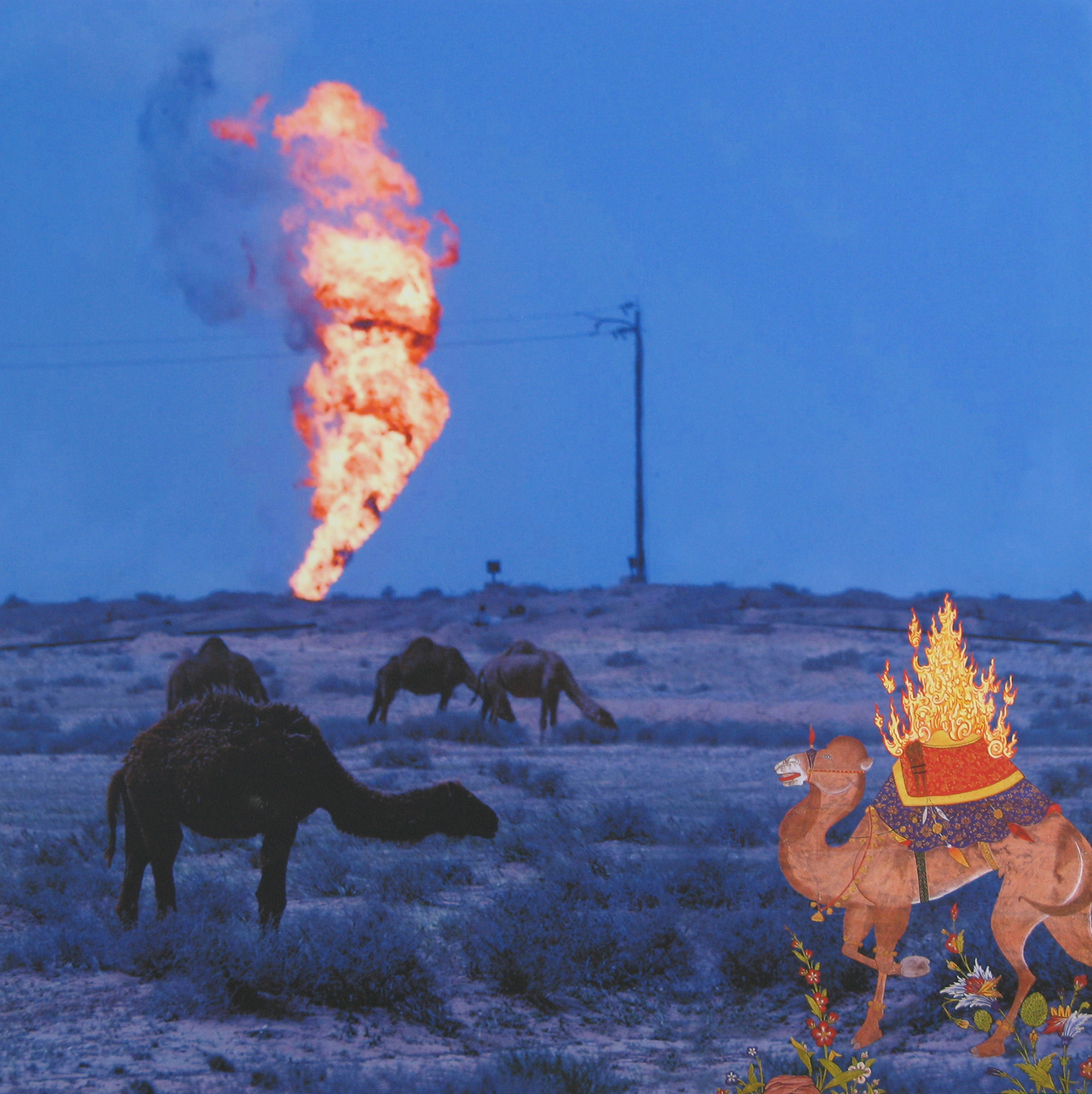 RECURRENCE: FLAMING CAMEL, 2008