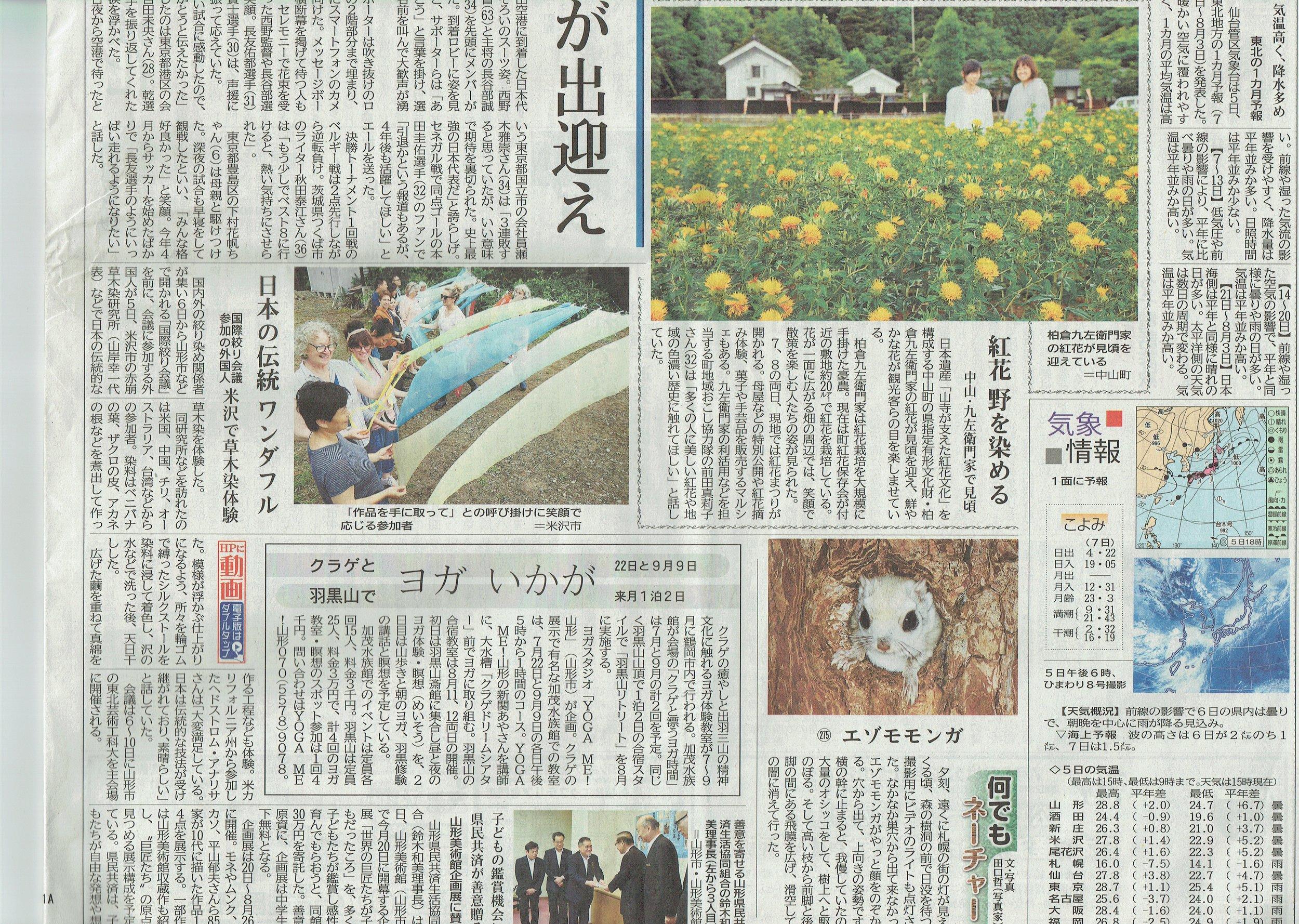 newspaper article 11iss.jpeg