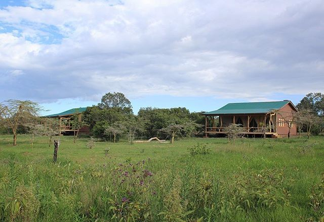 Blink and you'll miss them! Cottages 1A & B tucked neatly into the bush 🍃 #wildplaces