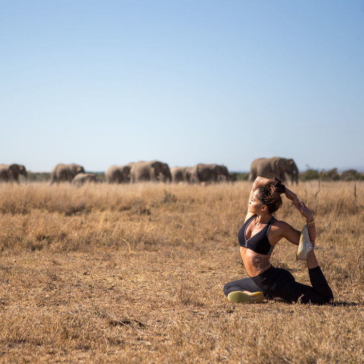 Yoga by Candace: The Five Senses Yoga Safari Retreat - MARCH 2019