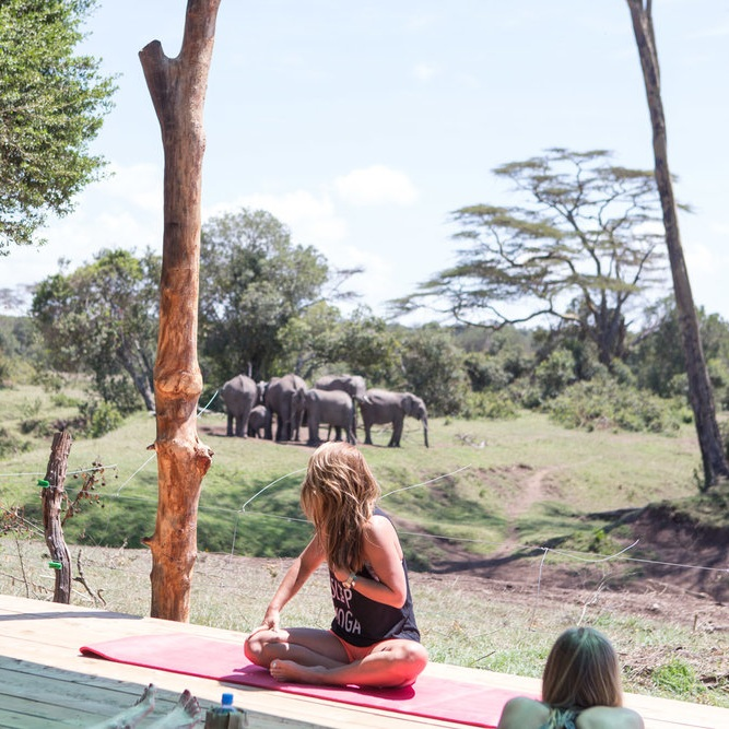 Yoga by Candace: Yoga Safari Retreat - July 2017