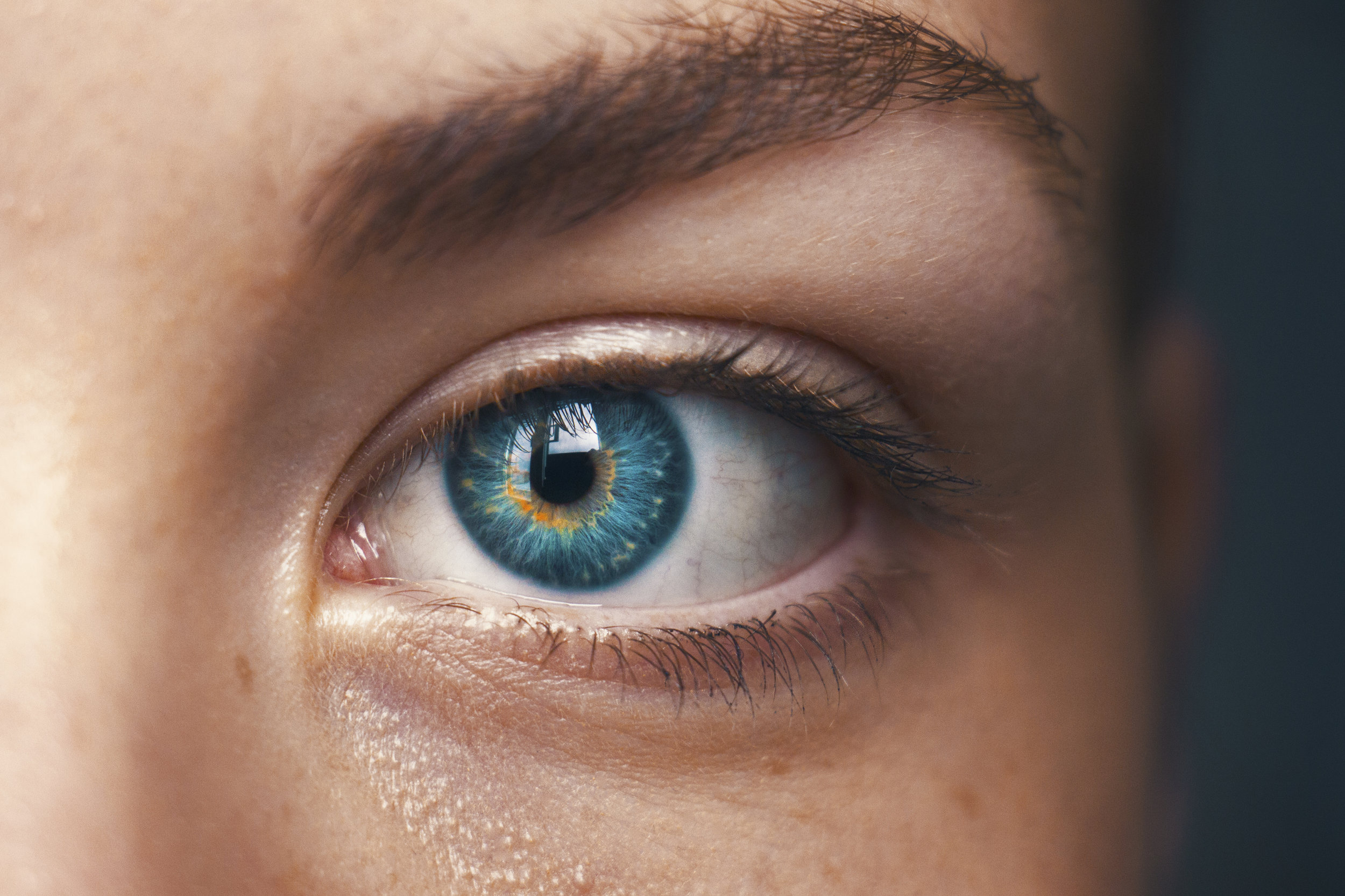 EMDR Therapy. - If you would like to learn more about EMDR therapy please visit www.EMDRIA.org for more details and research about this innovative form of therapy.