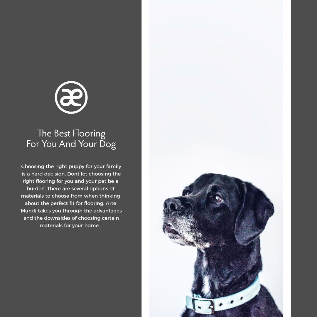Best-flooring-for-your-dog.jpg