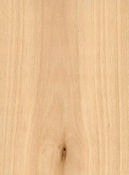sweet-birch-sealed.jpg