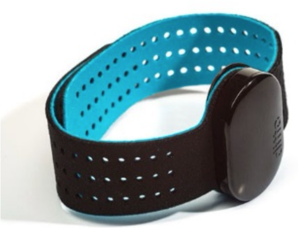 Ditto Wearable wristband