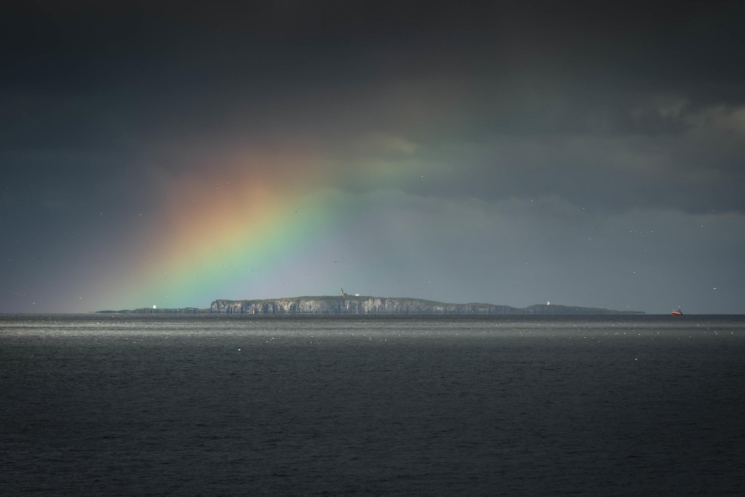 Isle Of May Rainbow