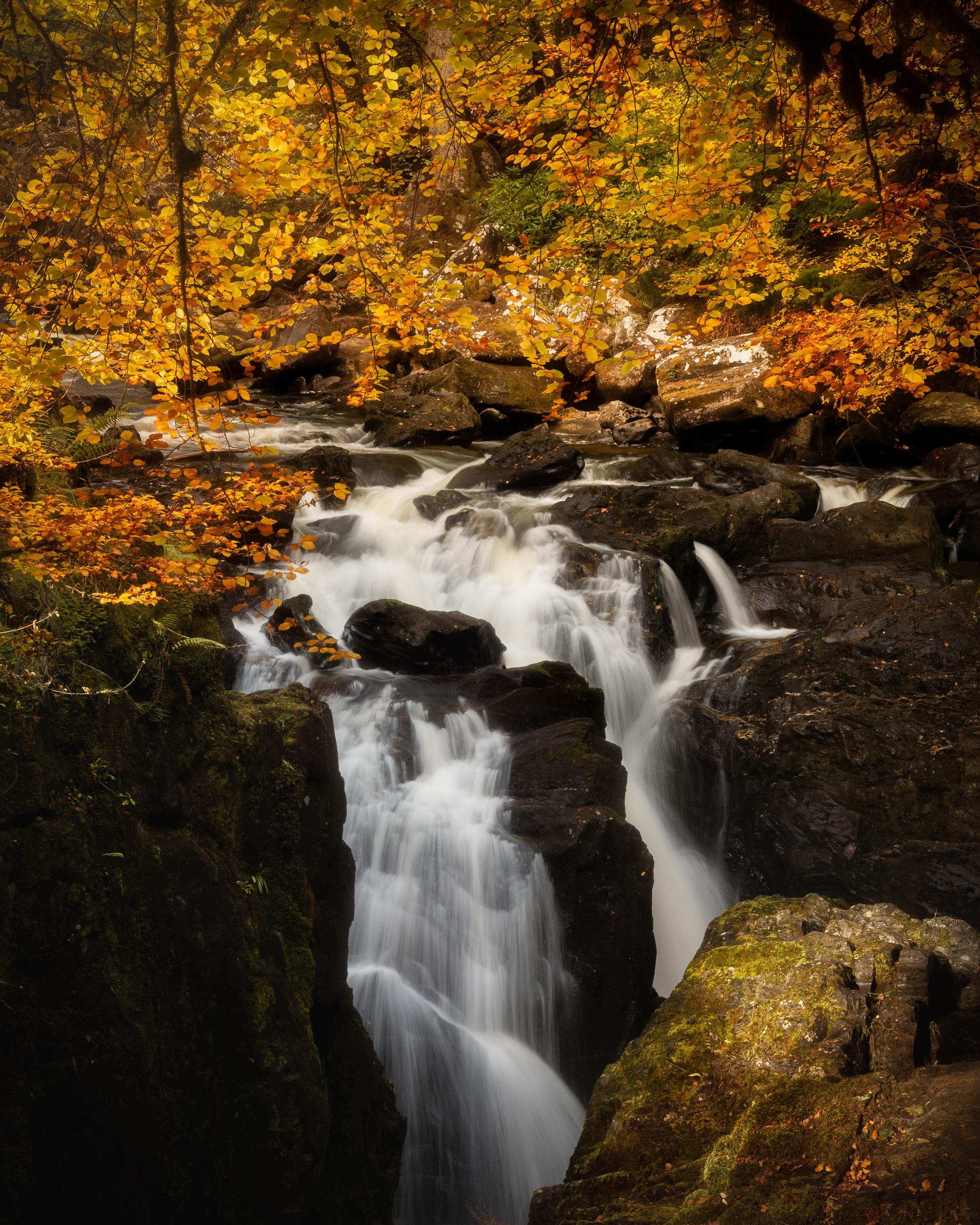 Autumn Morning At Black Linn Falls