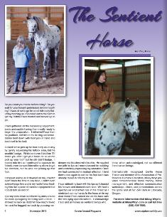 Sentient Horse