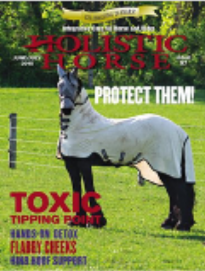 Secrets to Healthy Yet Simple Horse Keeping