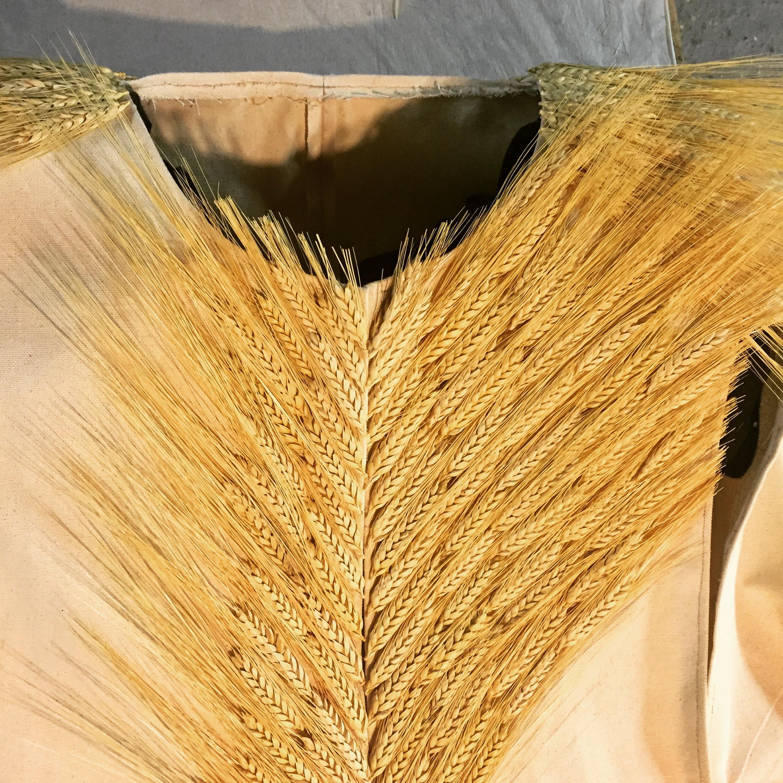 Demeter cloak bodice.JPG