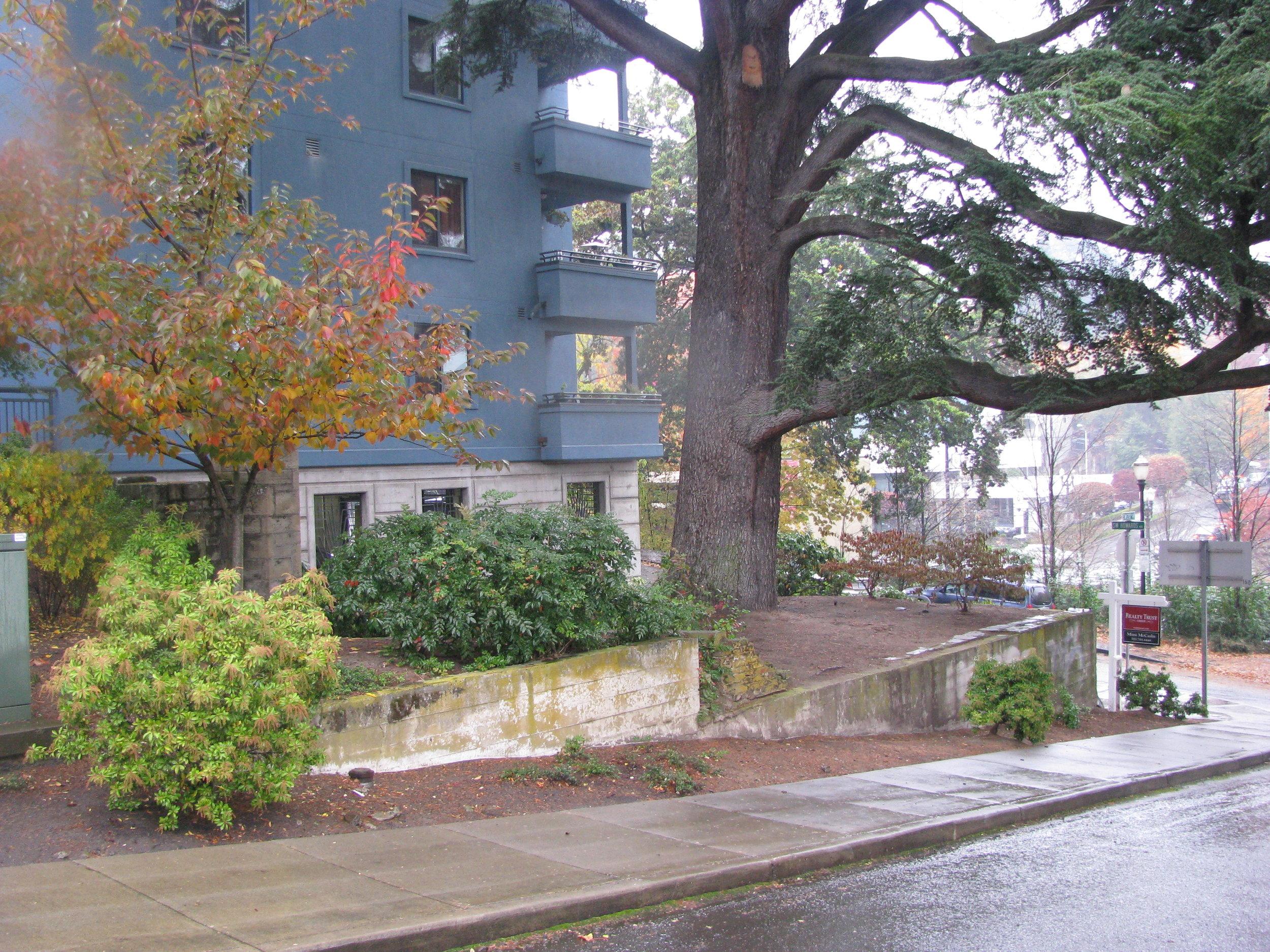 Arbor Vista-08 028.jpg