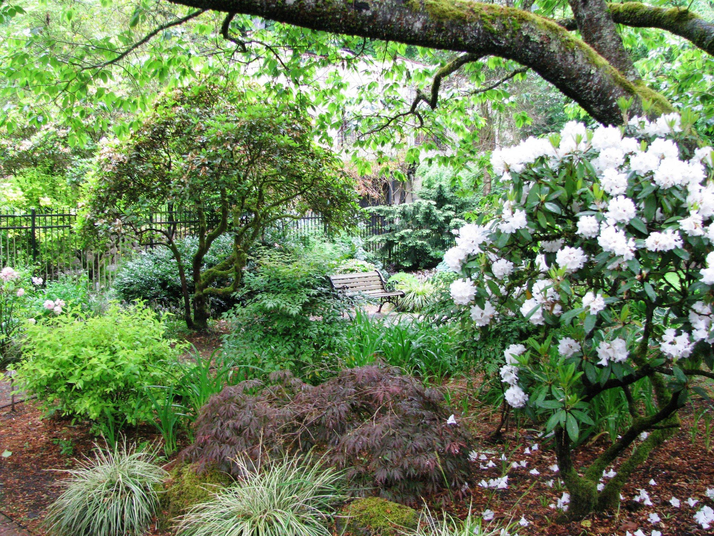 Lynch Garden May 2012 012.jpg