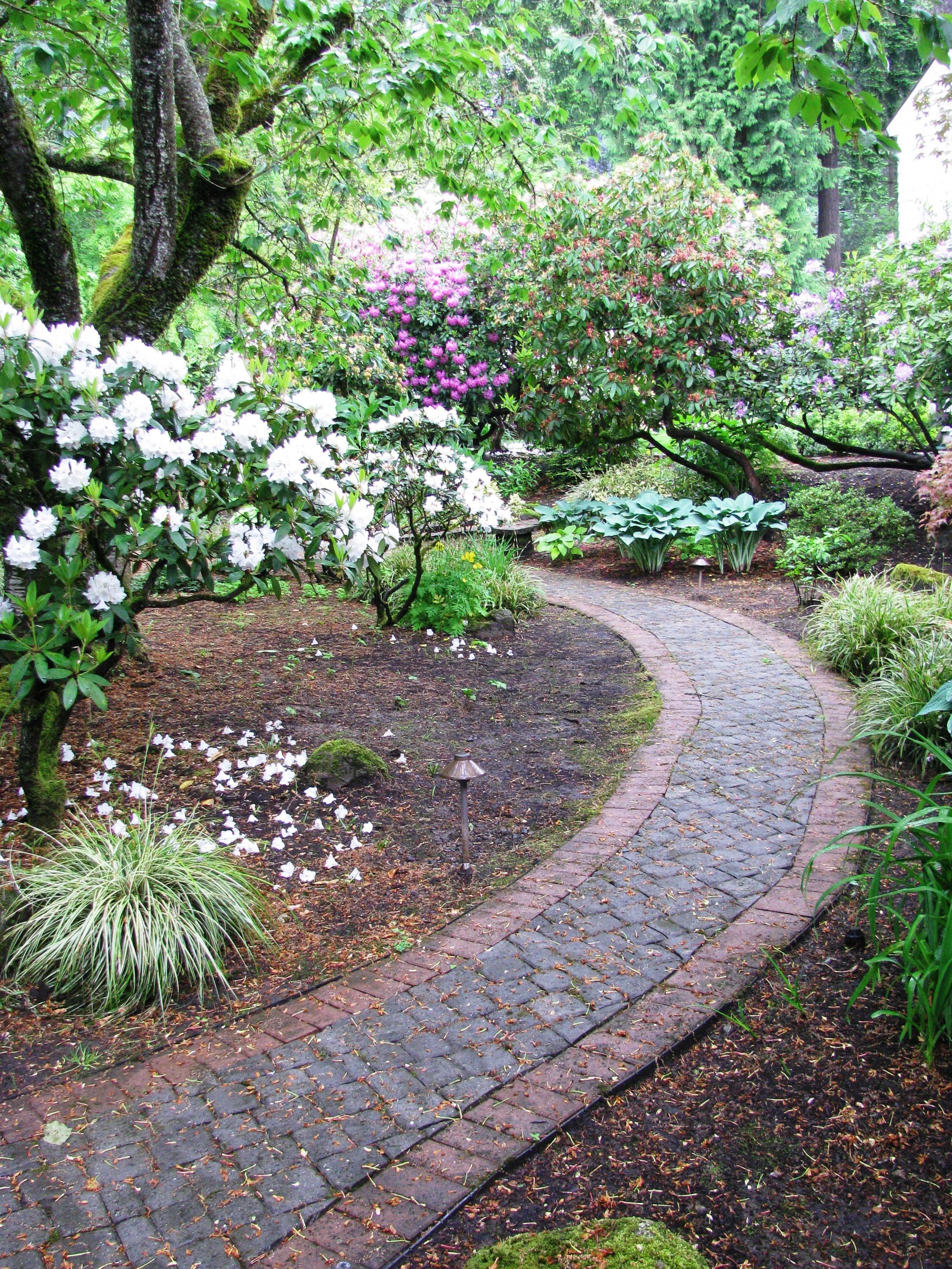 Lynch Garden May 2012 005.jpg