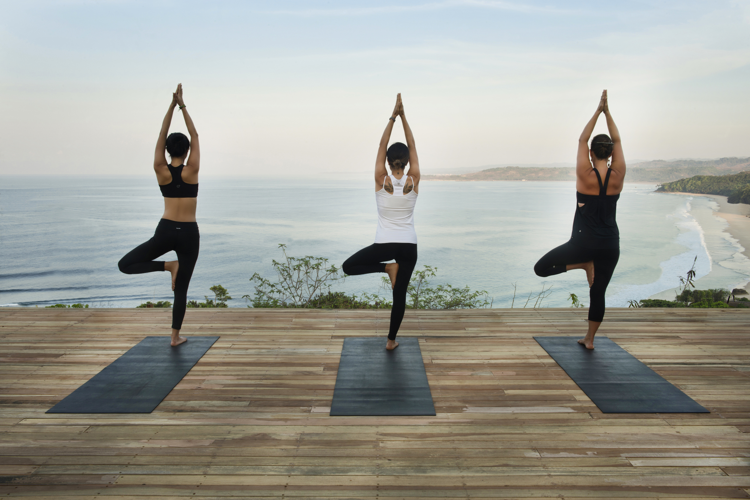 RS60_Yoga Pavilion - Tree Pose.jpg