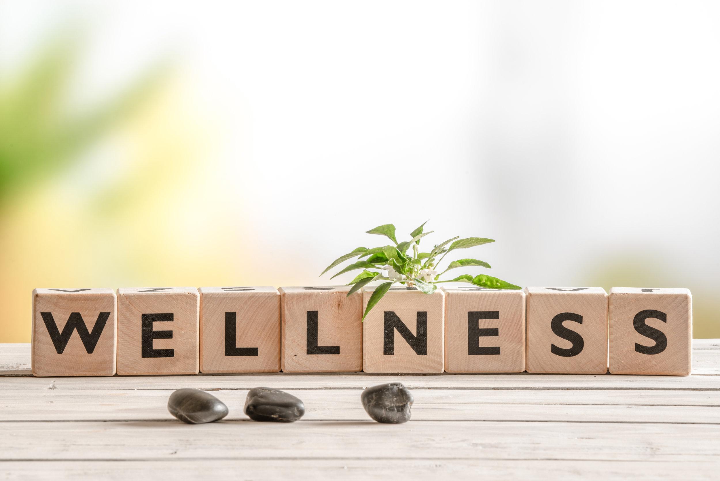 wellnessblocks.jpg